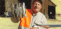 California Upland Game Hunts